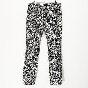 Ann Taylor Leopard Jeans Modern Straight Fit 4